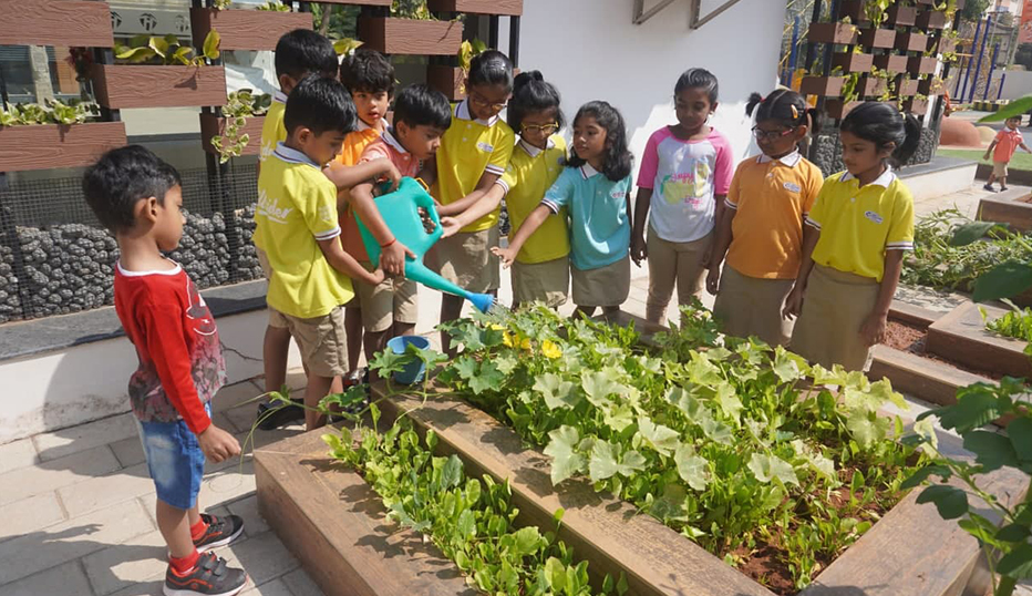 Kids school organic farm